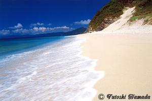 白い砂が打ち上げられたハミャ島